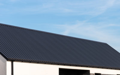 Jaki typ blachy na dach domu jednorodzinnego wybrać?